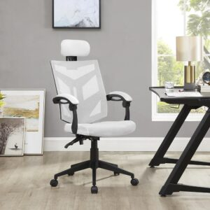 Naomi Home Juliet Adjustable Ergonomic Mesh Office Chair